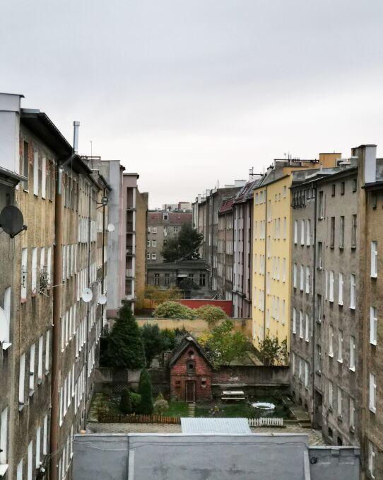 Na dachu kamienicy z widokiem na gołębnik przy ulicy Żupańskiego w Szczecinie