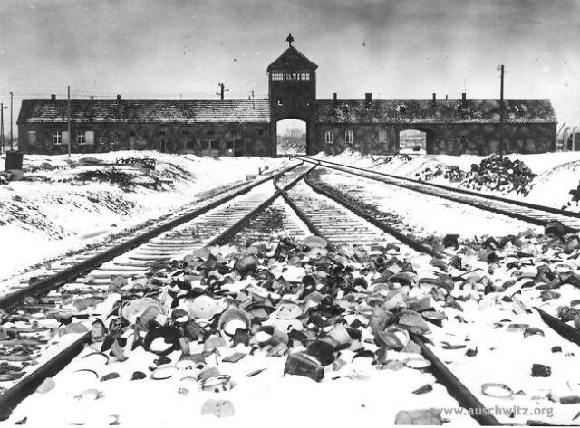 Jeden na pięciu młodych Niemców nie wie o Auschwitz
