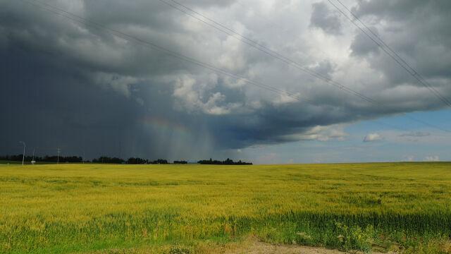 Prognoza pogody na dziś: temperatura  w górę, możliwe burze z gradem