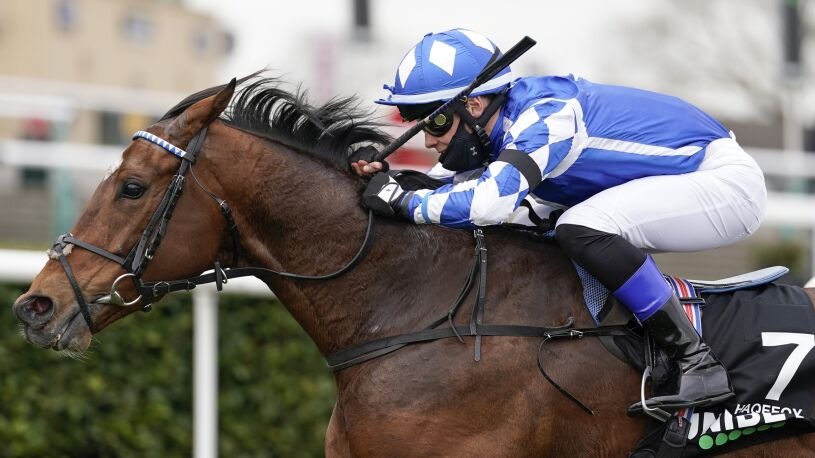 Szok w świecie wyścigów konnych