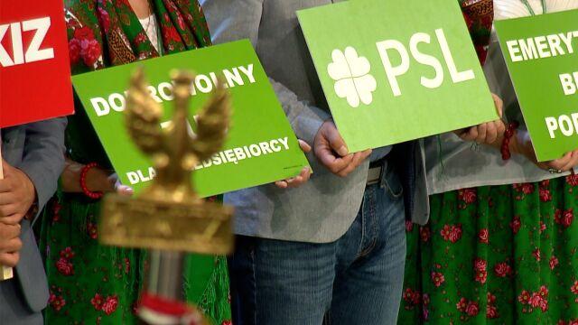 PSL i Kukiz'15 wchodzą do Sejmu