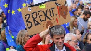 """""""Jak będzie szansa pozbyć się Wielkiej Brytanii, to Unia się jej bez żalu pozbędzie"""""""