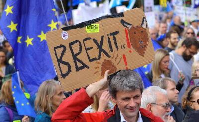 """Goście """"Faktów po Faktach"""" o brexicie"""