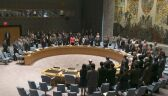 RB ONZ chce międzynarodowego śledztwa w sprawie katastrofy samolotu