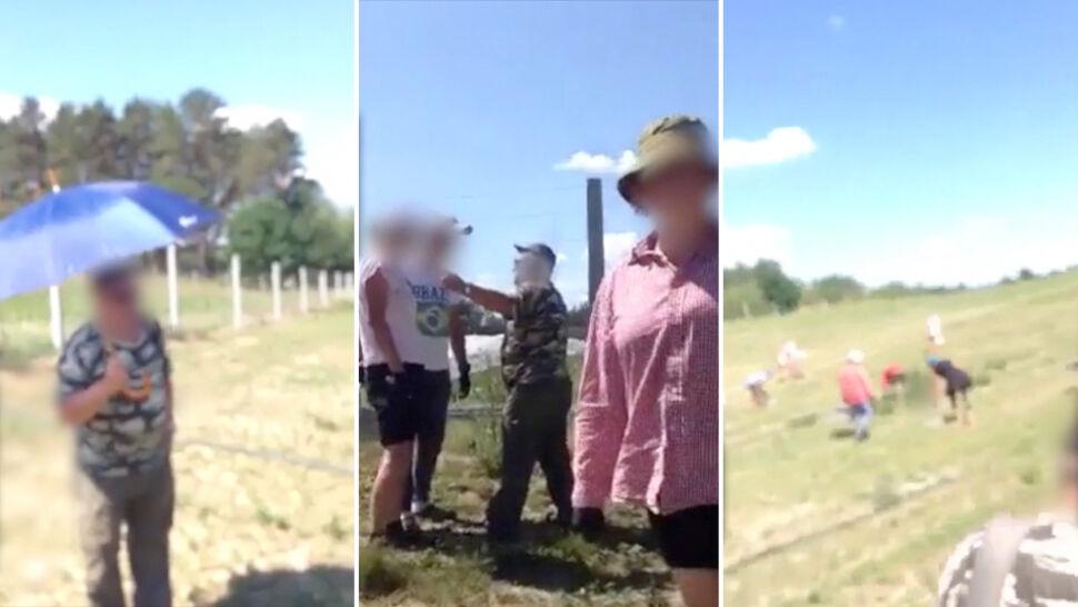 """""""Paszoł won i pysk zamknij"""". Nadzorca plantacji szparagów obrażał Ukraińców"""