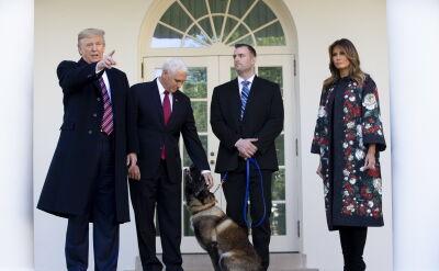 Pies Conan odwiedził Biały Dom