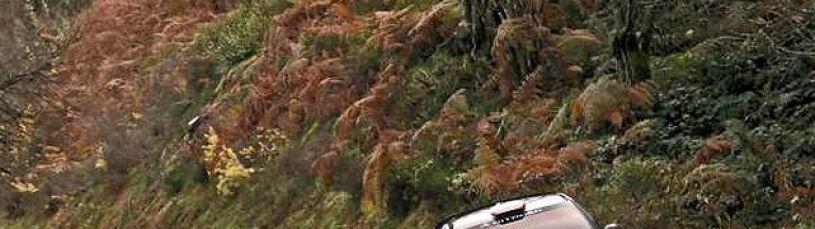 Kubica na stałe w WRC? Chce go gigant
