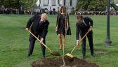Drzewko przyjaźni spod Białego Domu uschło