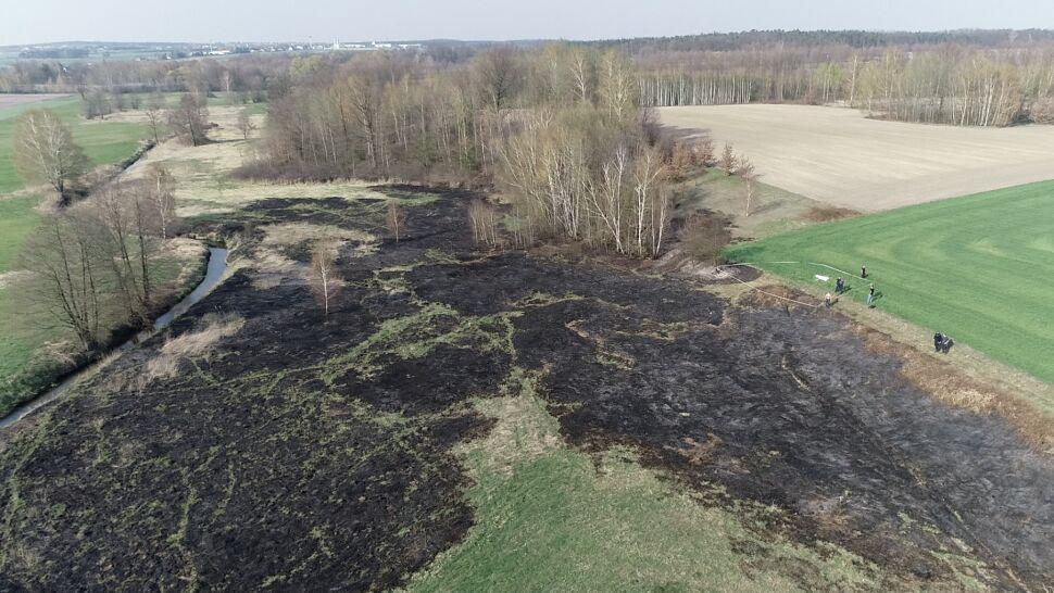 Dwaj bracia próbowali ugasić pożar łąki. Jeden z nich zginął