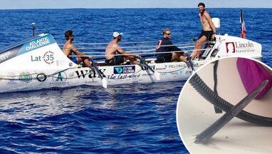 Atak drapieżnej ryby podczas zawodów wioślarskich.