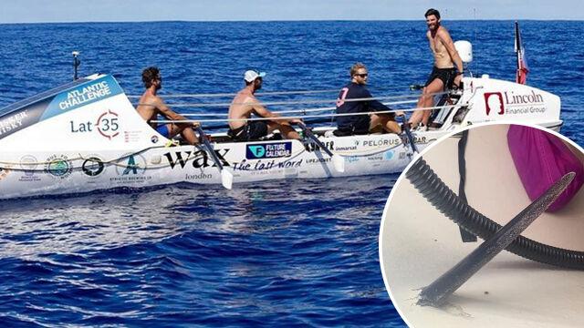 """Atak drapieżnej ryby podczas zawodów wioślarskich. """"Nie można było całkowicie usunąć szpica"""""""