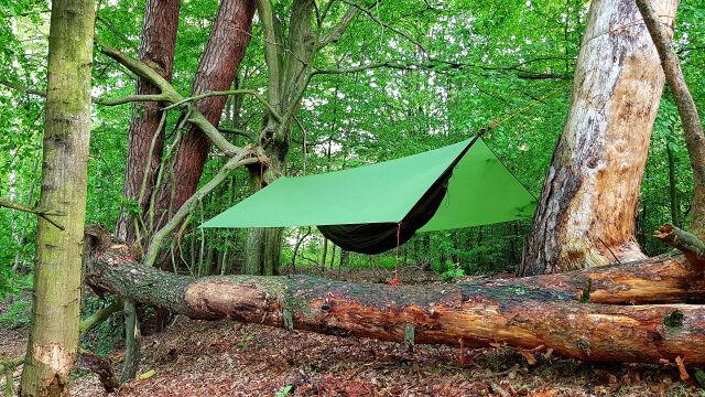 Lasy Państwowe otwierają się na miłośników bushcraftu. 43 specjalne obszary