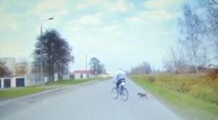 Rowerzysta jechał