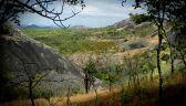 Słonie znalazły schronienie w rezerwacie Niassa