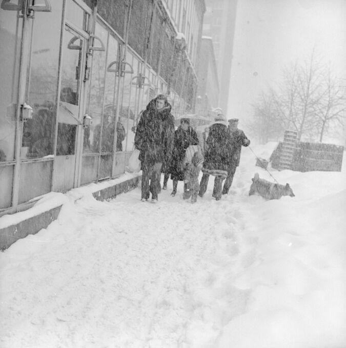 Przechodnie na jednej z warszawskich ulic