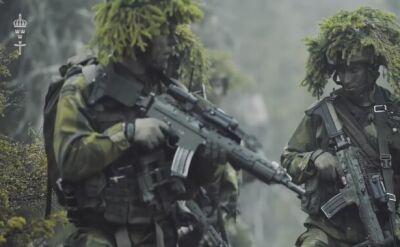 Działania szwedzkich wojsk w terenie
