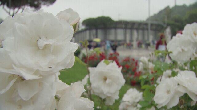 Obfite opady deszczu storpedowały turniej w Rzymie