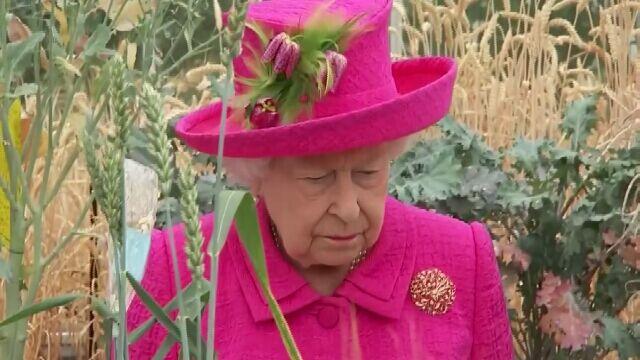 Wizyta królowej w Cambridge