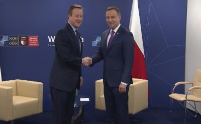 Prezydent Andrzej Duda na spotkaniu z brytyjskim premierem Davidem Cameronem
