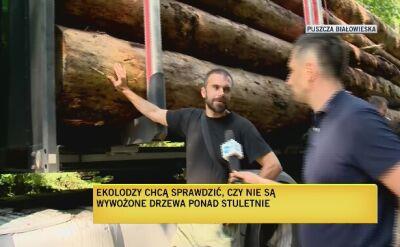 Ekolodzy twierdzą, że wywożone są ponad stuletnie drzewa