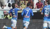 Torino - Napoli 1:3