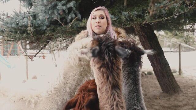 Agnieszka Grzelak zaprasza na spacer z alpakami