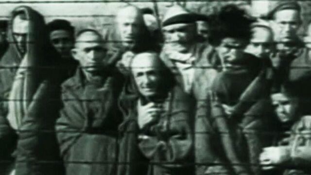 """26.01.2015   Auschwitz we wspomnieniach byłych więźniów. """"Mówić o tym nigdy dość"""""""