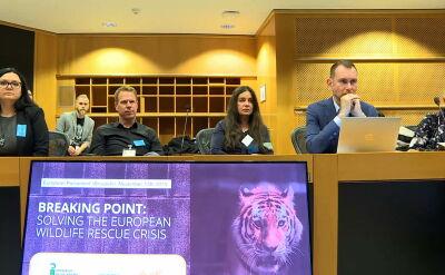 Najpierw uratowała tygrysy. Teraz w Parlamencie Europejskim walczy o zmianę przepisów