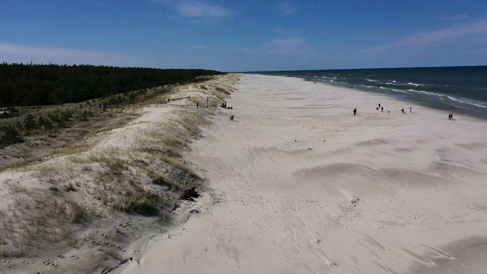 Nadmorskie wydmy potrzebują wolontariuszy. Urząd Morski w Gdyni szuka chętnych