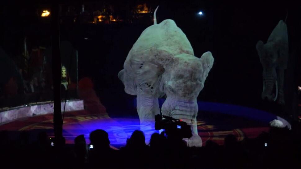 Hologramy zamiast zwierząt. Wyjątkowy pokaz cyrkowy w Niemczech