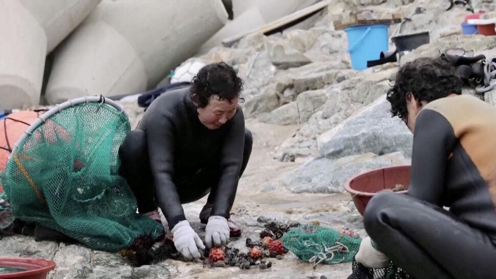 """""""Ta praca może zniknąć przez zmiany klimatyczne"""". Poławiacze strzykw mają problem"""