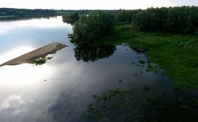 Spuścili wodę, by mogła przepłynąć barka. Zginęło nawet kilkaset ptaków