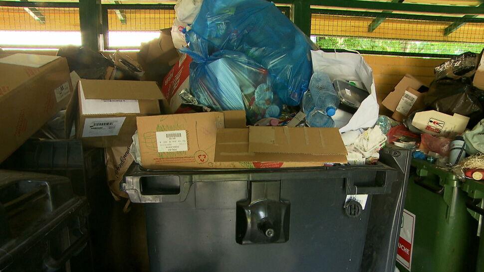 Odpowiedzialność zbiorowa za niesegregowanie śmieci. Są głosy sprzeciwu