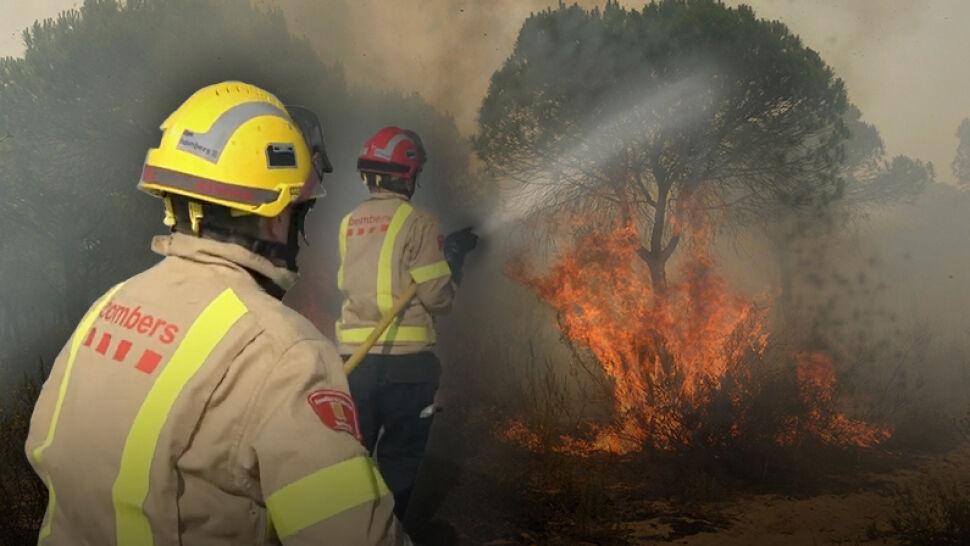 Ogromne pożary lasów w południowej Hiszpanii. Ewakuowani także polscy turyści
