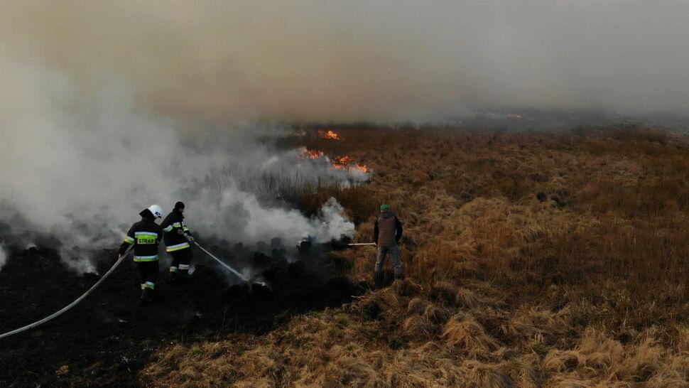 """""""Pierwszy raz coś takiego widzę"""". Pożar w Biebrzańskim Parku Narodowym wciąż się rozprzestrzenia"""