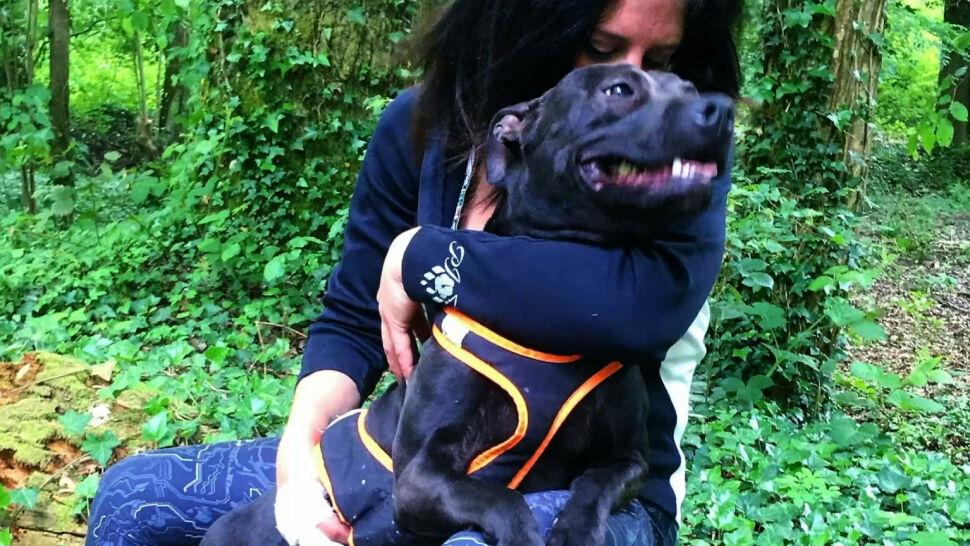 Ciężarna kobieta zaatakowana przez psy. 29-latka nie żyje