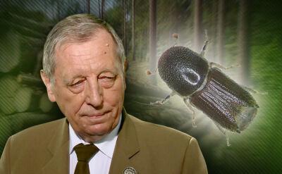 """Minister Szyszko pewny, europejscy naukowcy wątpią. """"Harvestery nigdy nie były naturalne"""""""