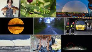 Różne oblicza natury. Wybierzcie materiał września