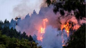 Pożar na Gran Canarii. Ewakuowano ponad 2000 osób