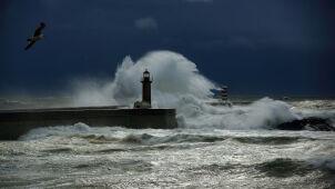 Niebezpieczne porywy wiatru. Ostrzeżenia IMGW w całym kraju