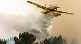 Rośnie liczba rannych w pożarach w Portugalii.