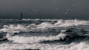 Silny wiatr na wybrzeżu, sztorm na Bałtyku. Alarmy IMGW na północy Polski