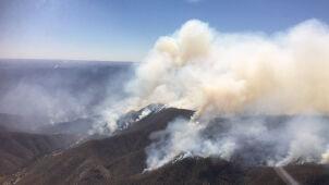 Ostrzeżenie dla mieszkańców. Pożary trawią północną Australię