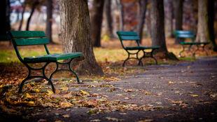 Jesienna sobota. W niedzielę się rozpogodzi