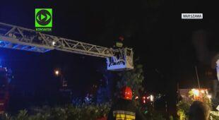 Strażacy w stolicy usuwali powalone drzewa
